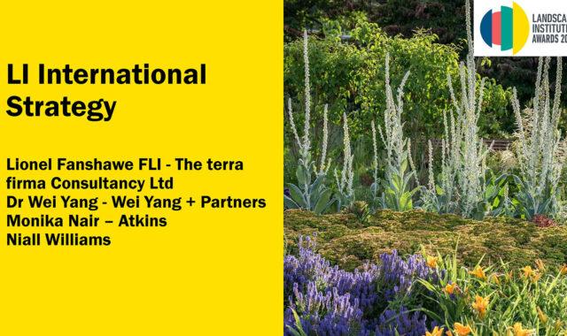 Image of Dr Wei Yang spoke at LI Awards 2020 webinar on international collaboration